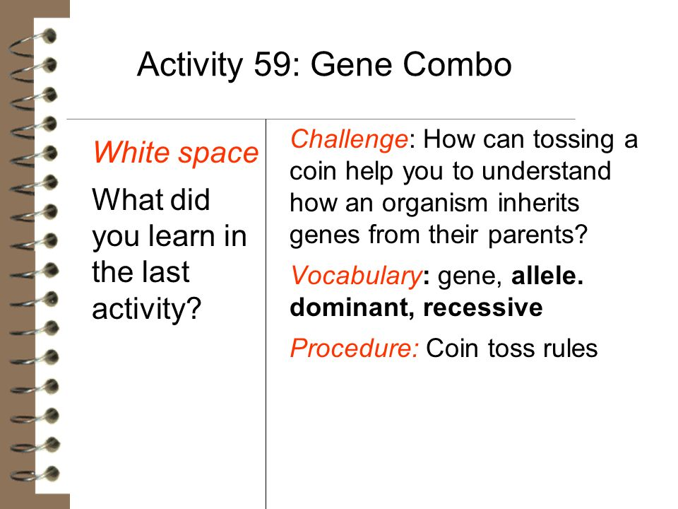 Activity 59: Gene Combo White space