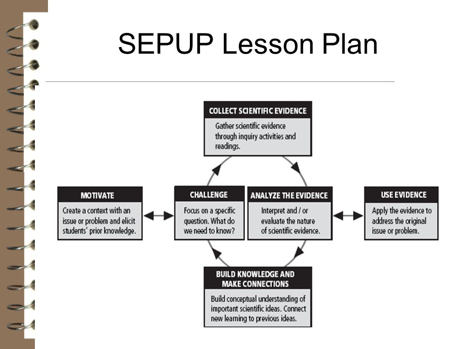 SEPUP Lesson Plan