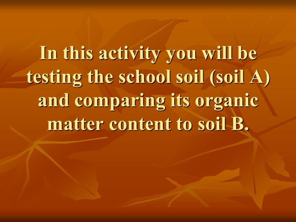 In this activity you will be testing the school soil (soil A) and comparing its organic matter content to soil B.
