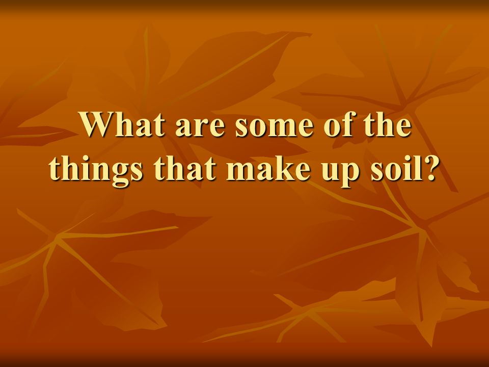 What are some of the things that make up soil