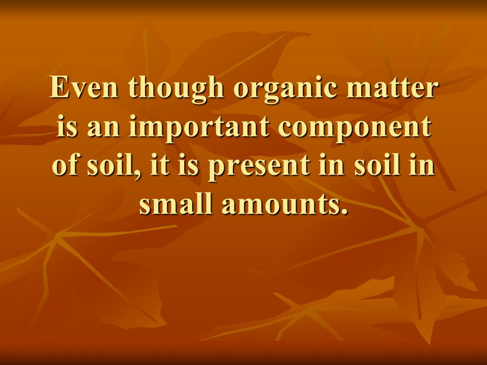 Even though organic matter is an important component of soil, it is present in soil in small amounts.