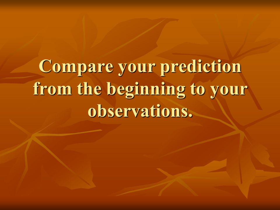Compare your prediction from the beginning to your observations.