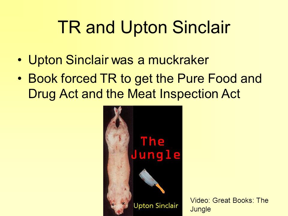 TR and Upton Sinclair Upton Sinclair was a muckraker