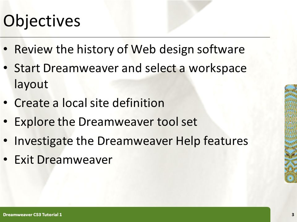 Tutorial 1 Getting Started with Adobe Dreamweaver CS3 - ppt download