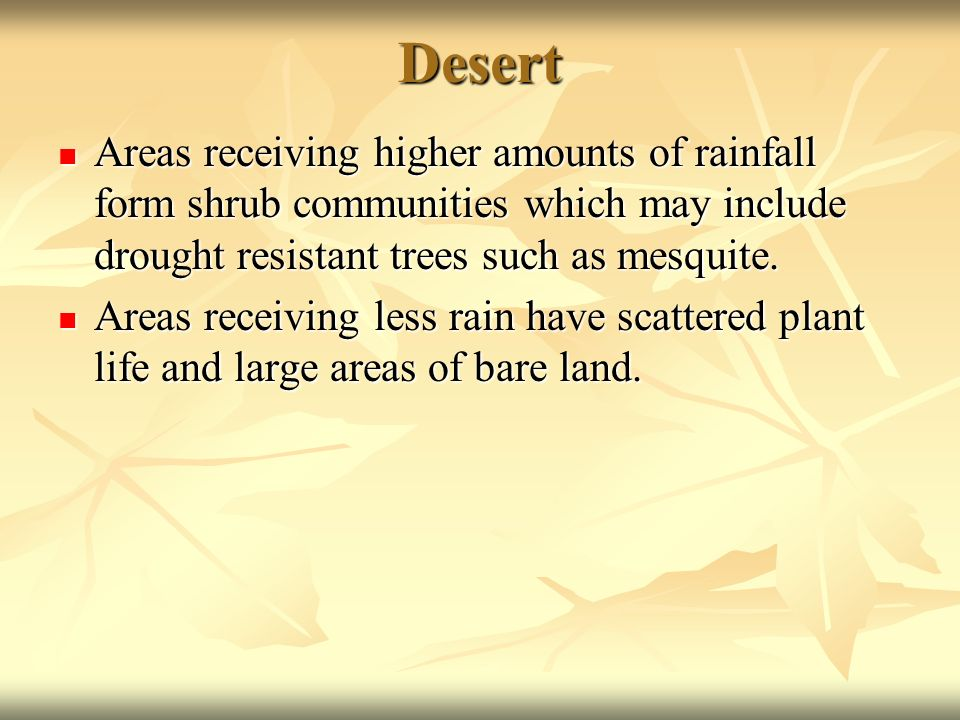 Desert Areas receiving higher amounts of rainfall form shrub communities which may include drought resistant trees such as mesquite.