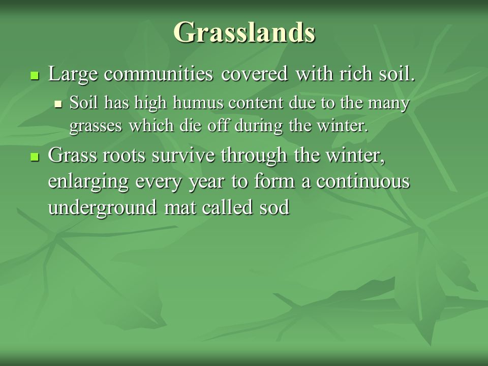 Grasslands Large communities covered with rich soil.