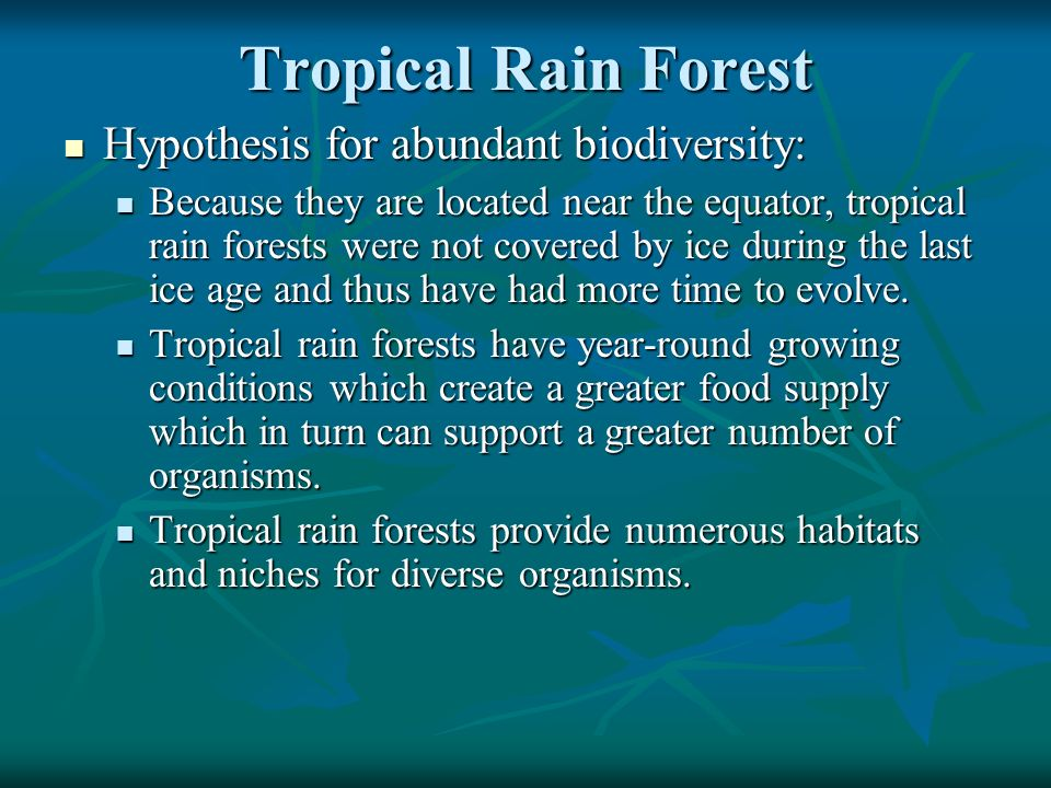 Tropical Rain Forest Hypothesis for abundant biodiversity: