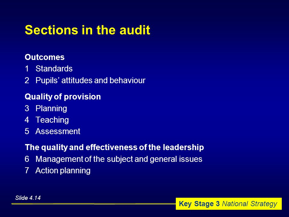 Sections in the audit Outcomes 1 Standards