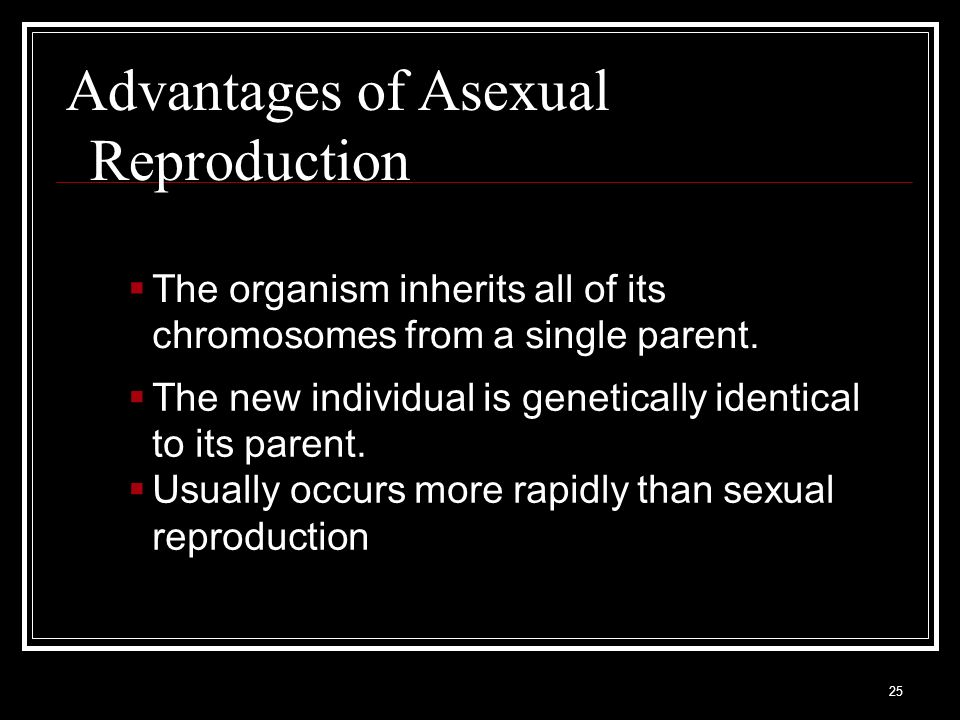 Advantages of Asexual Reproduction