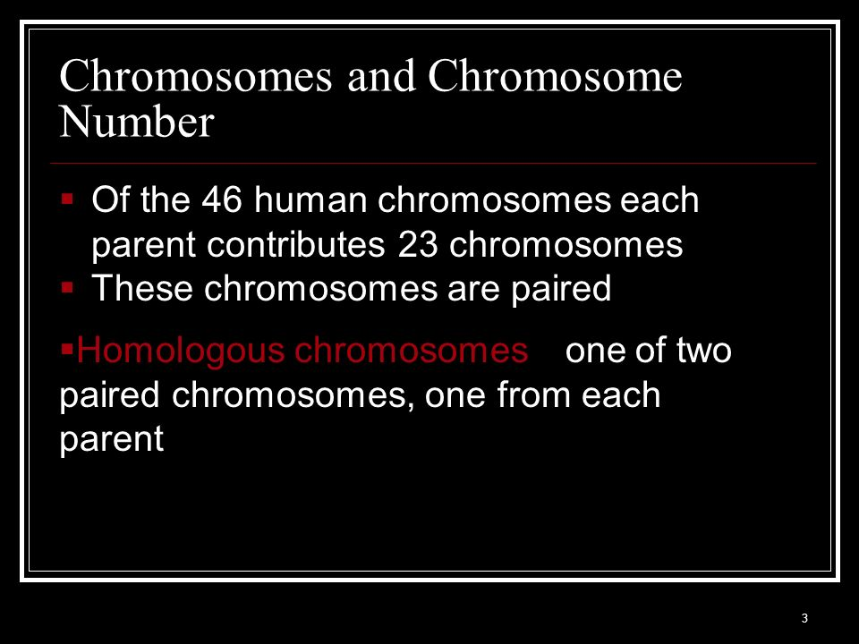 Chromosomes and Chromosome Number