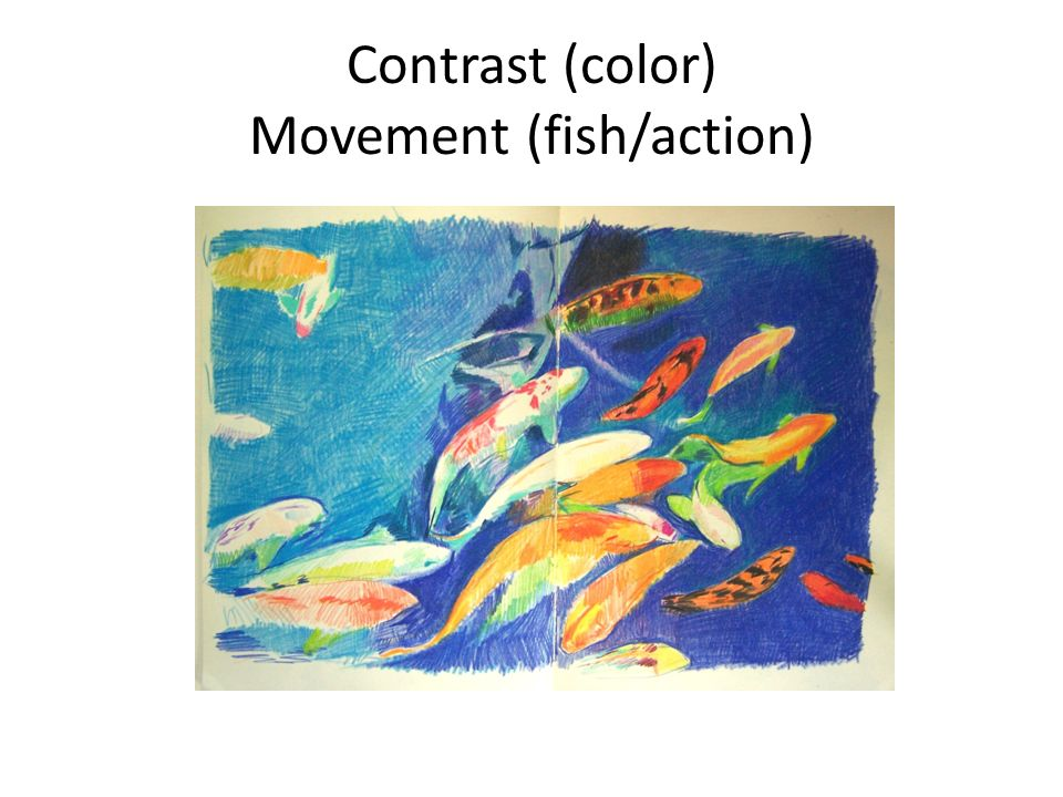 Contrast (color) Movement (fish/action)