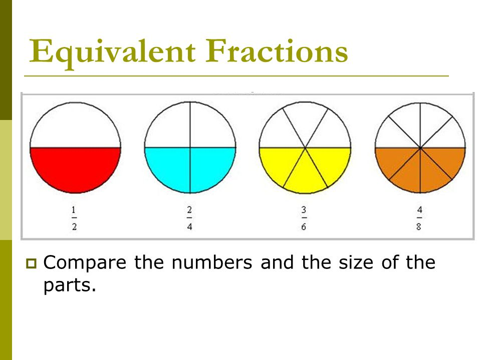 Fractions Getting The Whole Picture Ppt Download