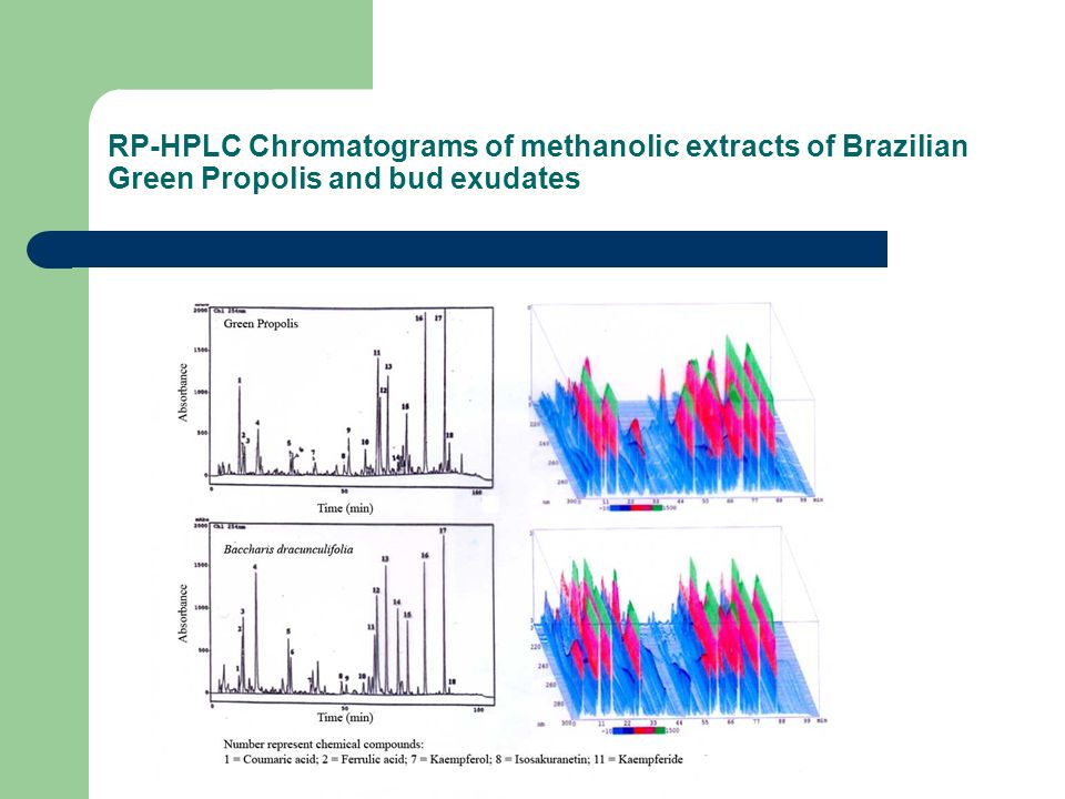 RP-HPLC Chromatograms of methanolic extracts of Brazilian Green Propolis and bud exudates