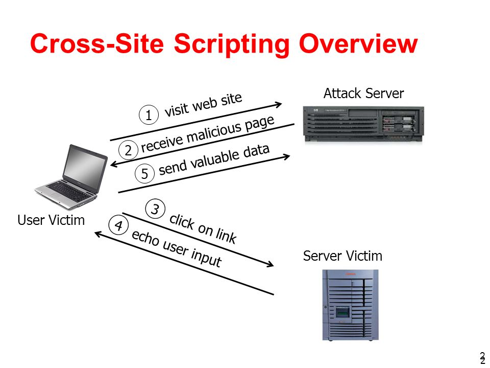 Cross-Site Scripting Overview