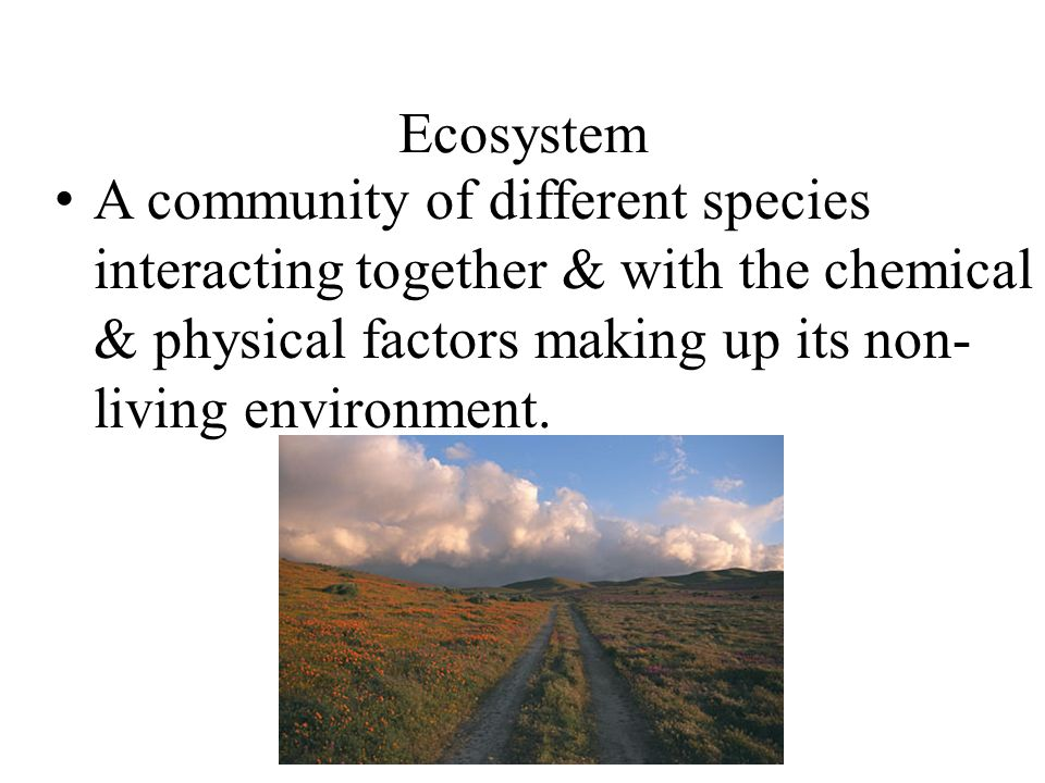 Ecosystem A community of different species interacting together & with the chemical & physical factors making up its non-living environment.