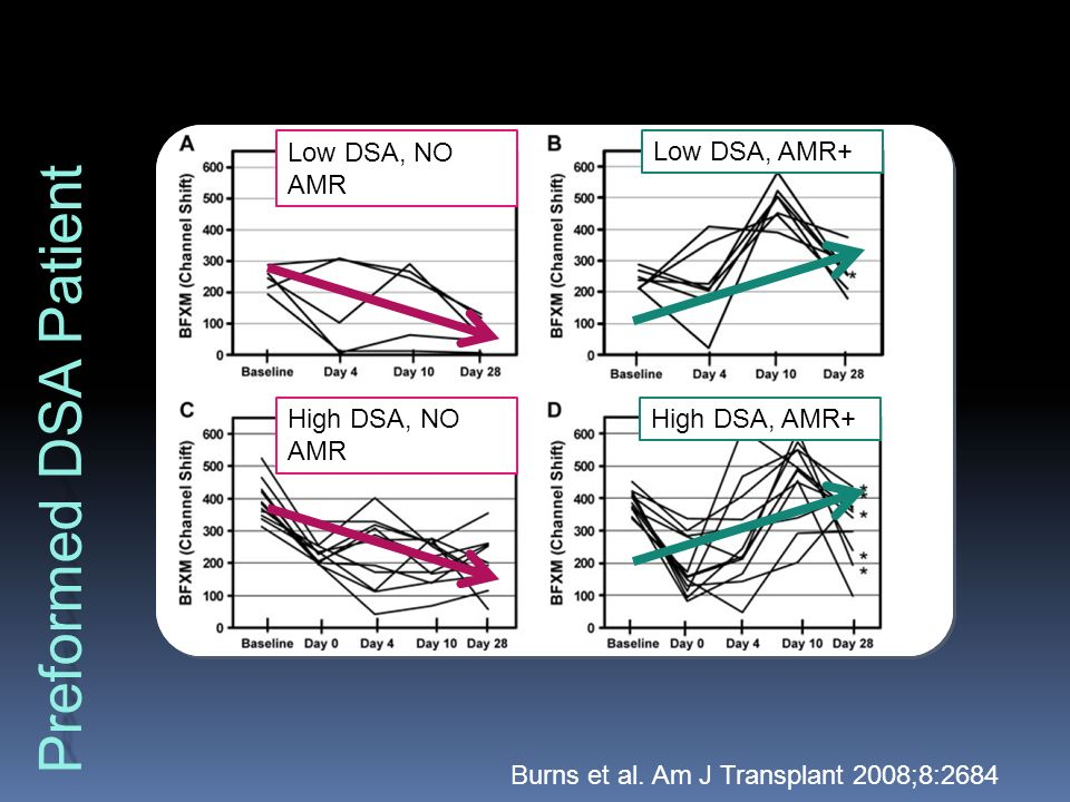 Monitoring HLA-specific antibodies - ppt video online download
