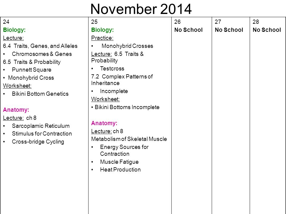 August First Day Of School Biology Syllabus Anatomy Ppt Video
