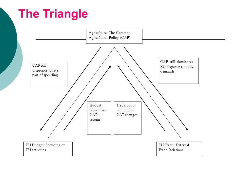 c860f6170a6 The Triangle Agriculture  The Common Agricultural Policy (CAP)