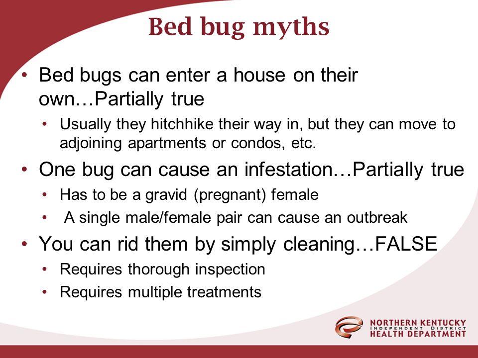 Bed Bugs Bob Mccandless R S Senior Health Environmentalist Ppt