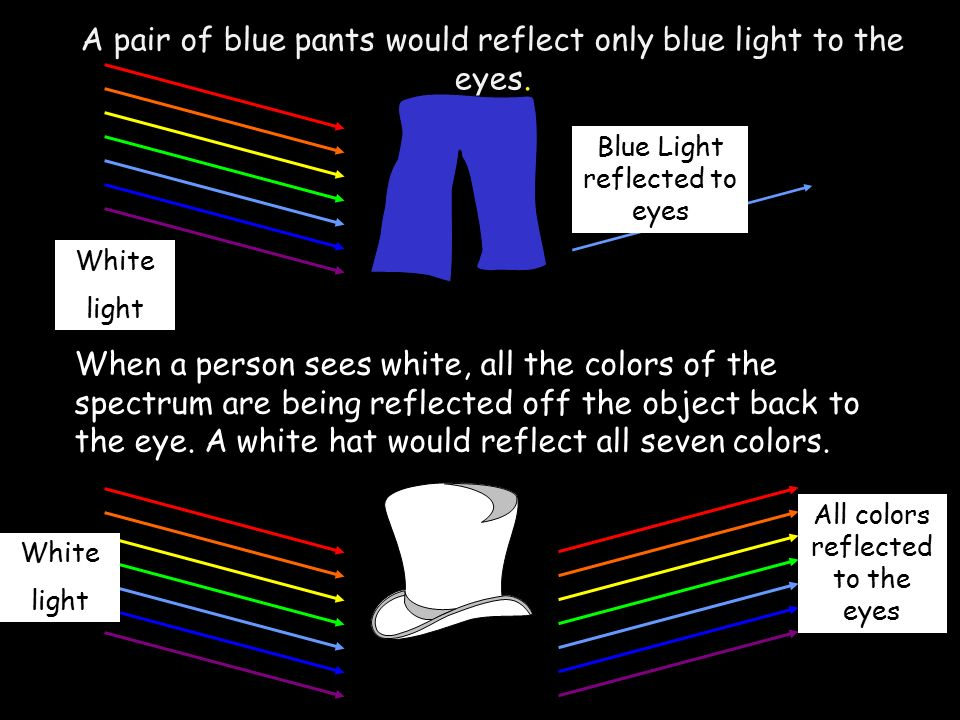 Light and Color Standard: S8P4c  Explain how the human eye