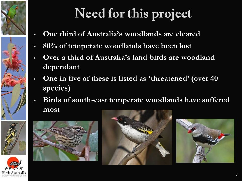Need for this project One third of Australia's woodlands are cleared