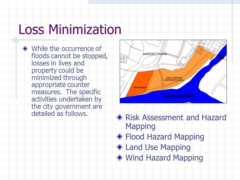 Loss Minimization Risk Assessment and Hazard Mapping