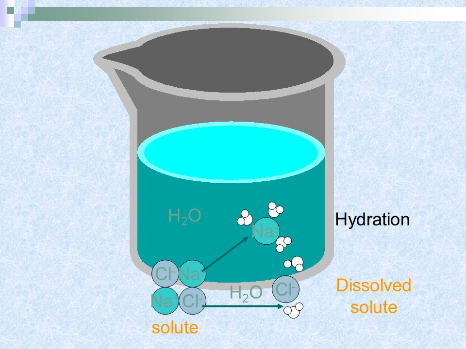 H2O Hydration Na+ Cl- Na+ Dissolved solute Cl- H2O Na+ Cl- solute