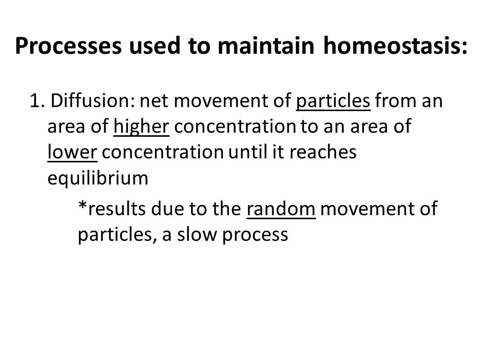 Processes used to maintain homeostasis: