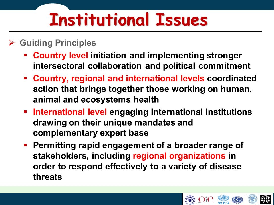 Institutional Issues Guiding Principles