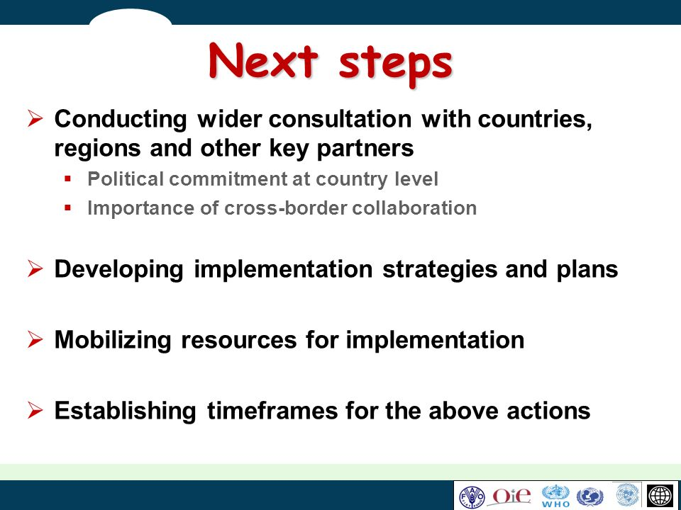 Next steps Conducting wider consultation with countries, regions and other key partners. Political commitment at country level.