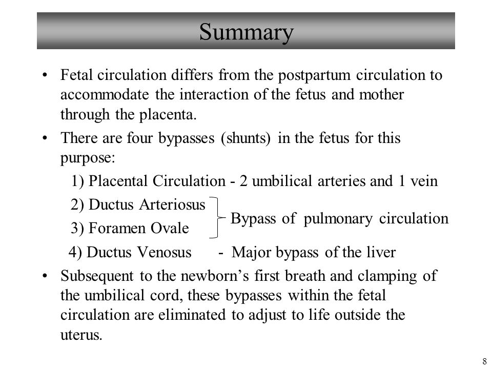 the history of fetal circulation physical education essay Preventive obstetrics essay sample   health history  physical examination  mother craft education consist of nutritional assessment,.