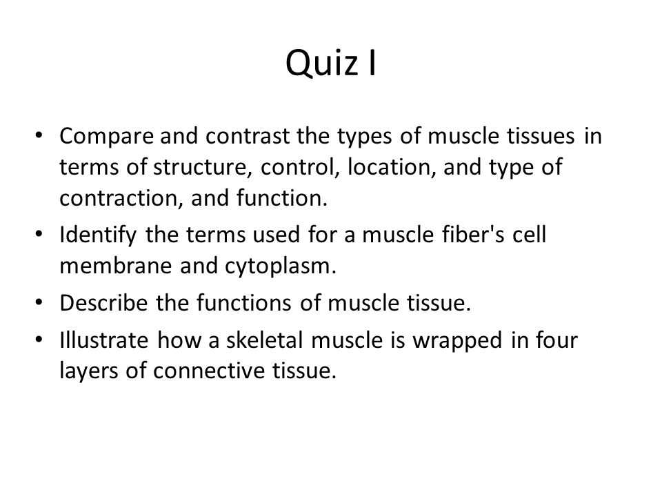 Guide to what general information to be familiar with for each quiz ...