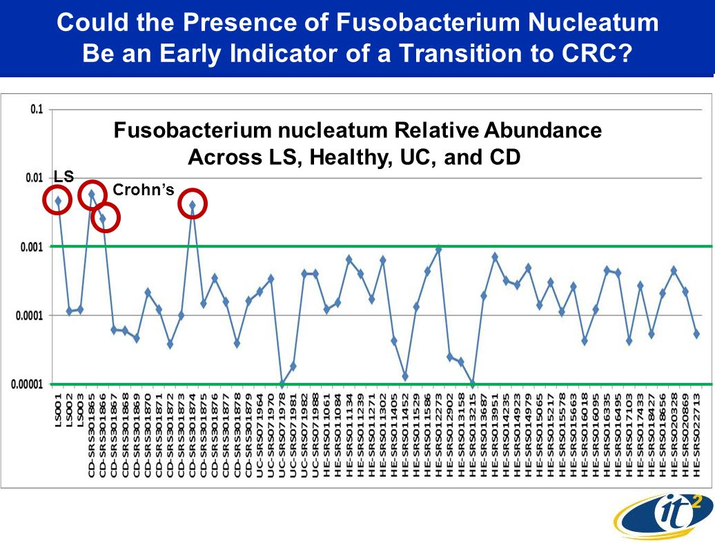 Could the Presence of Fusobacterium Nucleatum Be an Early Indicator of a Transition to CRC