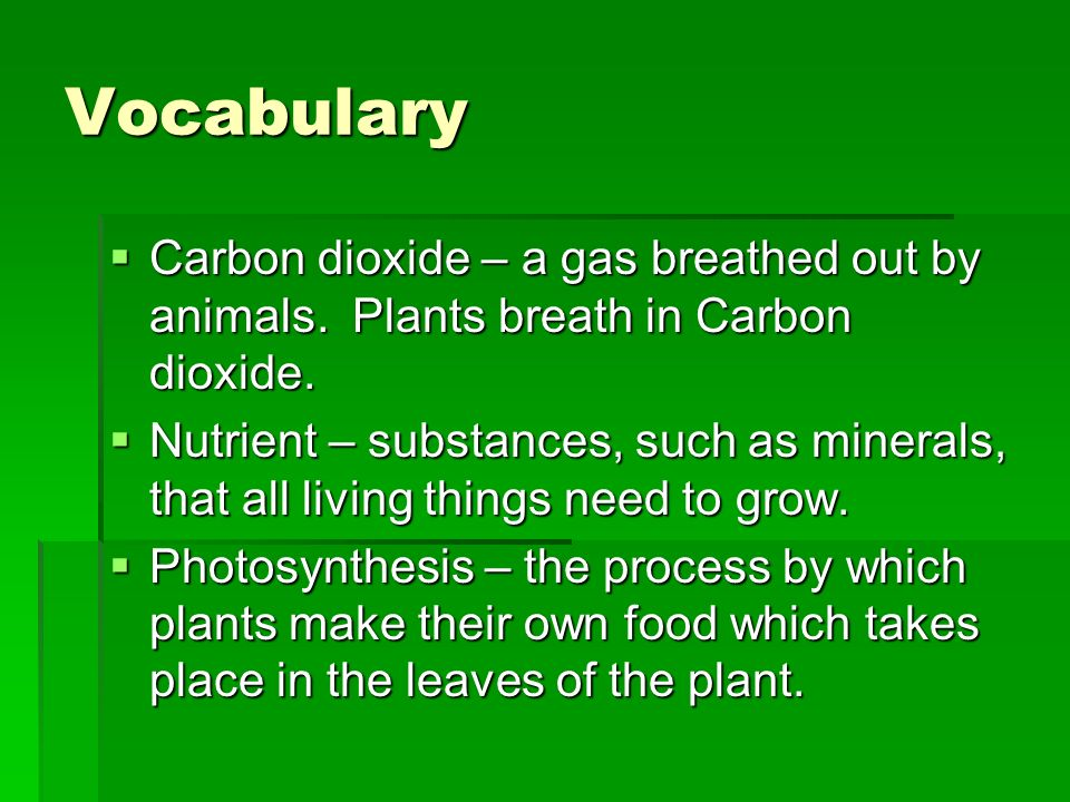 Vocabulary Carbon dioxide – a gas breathed out by animals. Plants breath in Carbon dioxide.