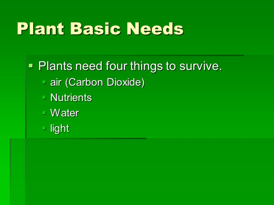 Plant Basic Needs Plants need four things to survive.