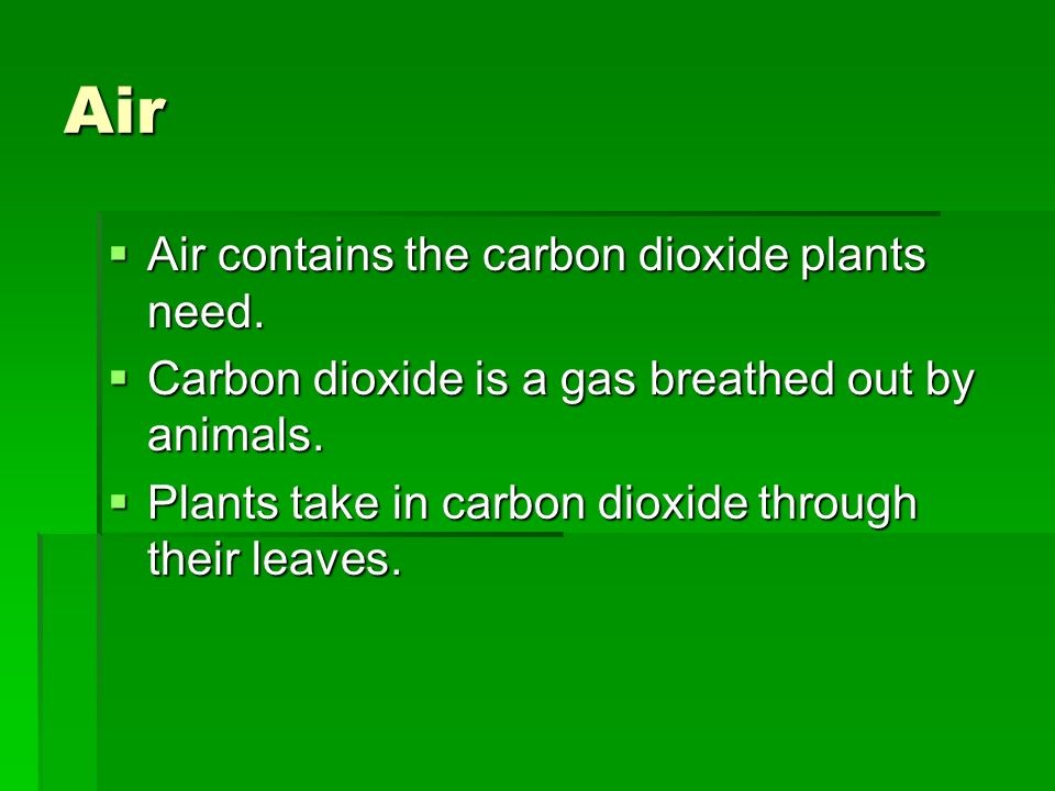 Air Air contains the carbon dioxide plants need.