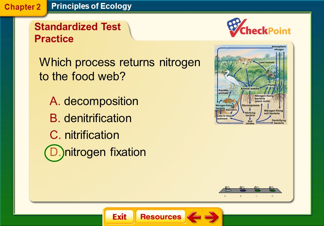 Which process returns nitrogen to the food web