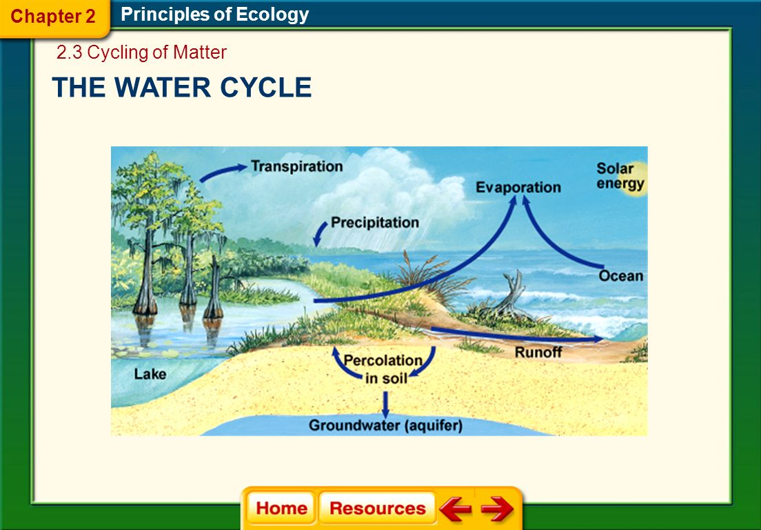 Chapter 2 Principles of Ecology 2.3 Cycling of Matter THE WATER CYCLE