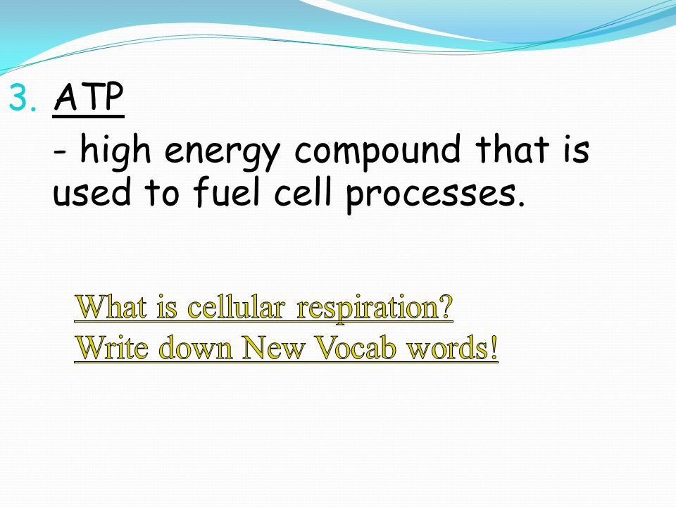 - high energy compound that is used to fuel cell processes.