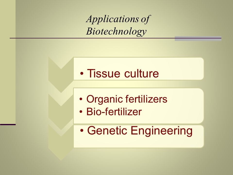 Genetic Engineering Tissue culture Applications of Biotechnology