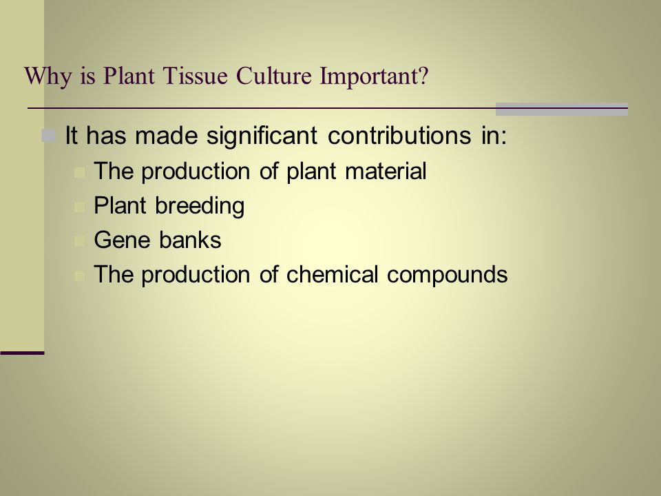 Why is Plant Tissue Culture Important