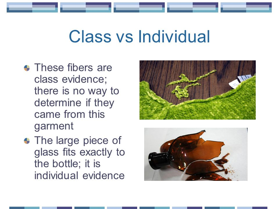 Class vs Individual These fibers are class evidence; there is no way to determine if they came from this garment.
