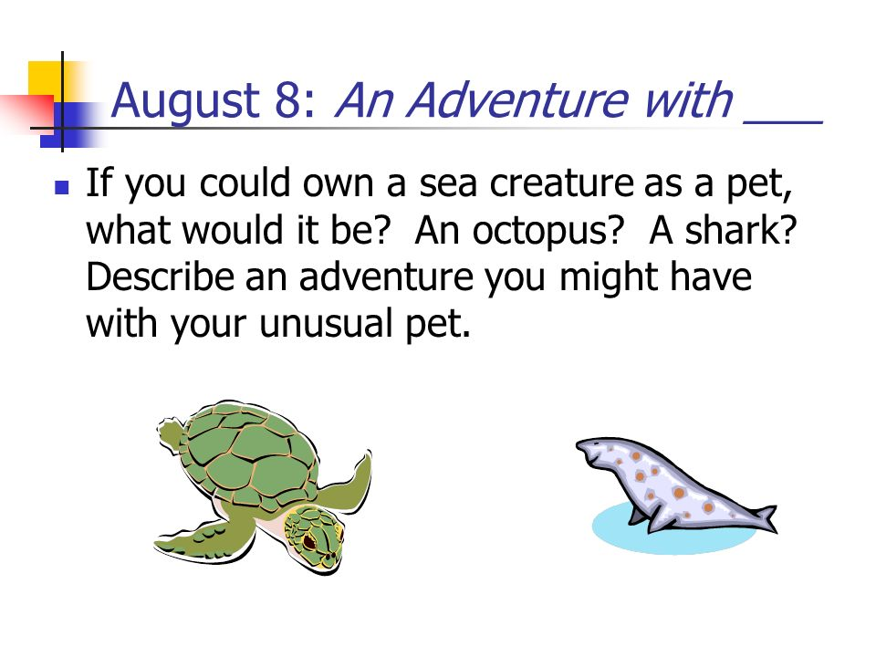 August 8: An Adventure with ___