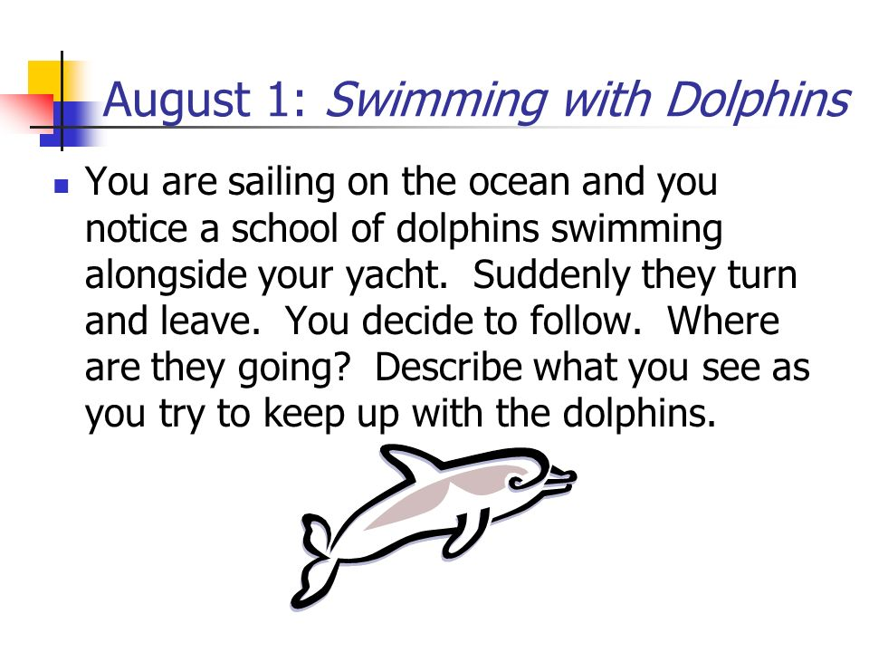 August 1: Swimming with Dolphins