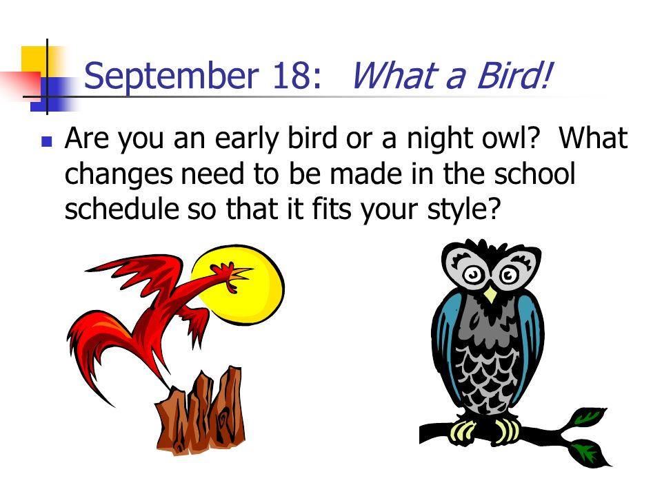 September 18: What a Bird. Are you an early bird or a night owl.