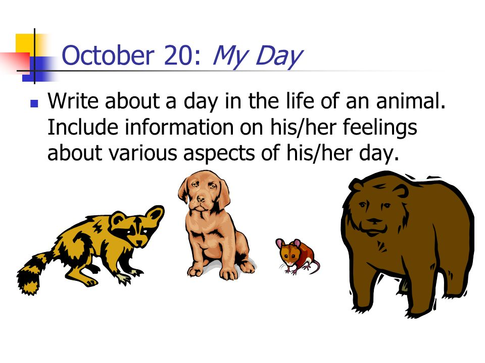 October 20: My Day Write about a day in the life of an animal.