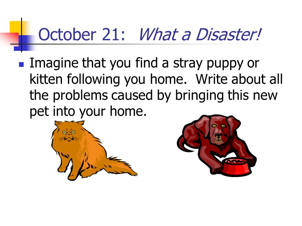 October 21: What a Disaster!