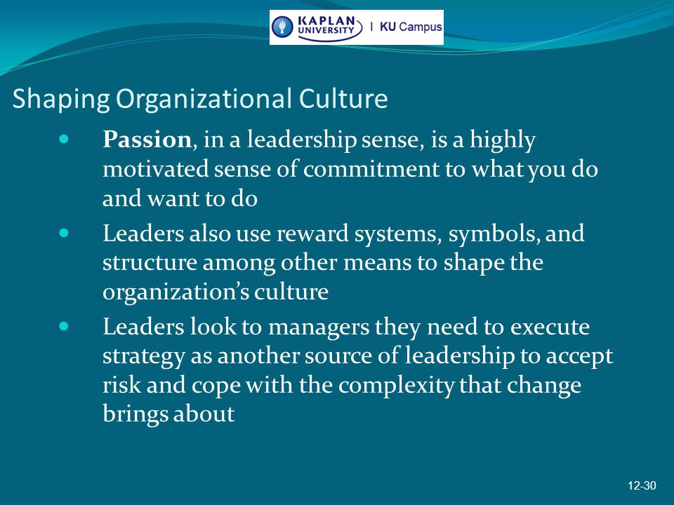 shaping organizational culture