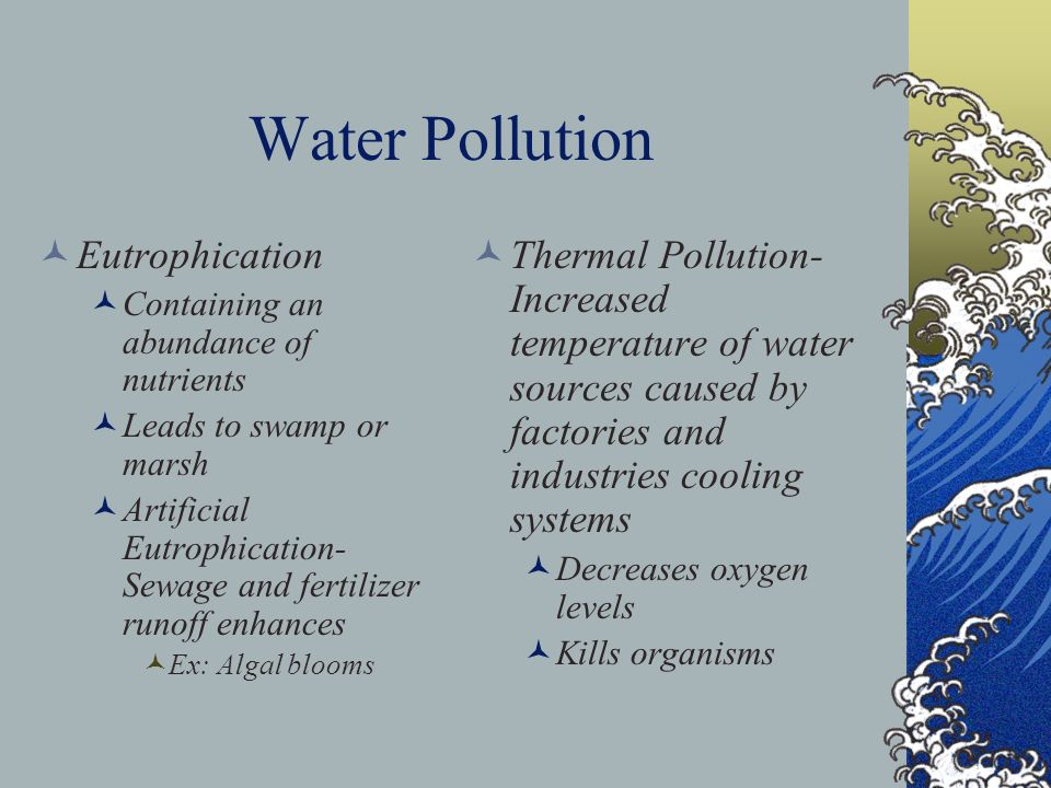 Water Pollution Eutrophication