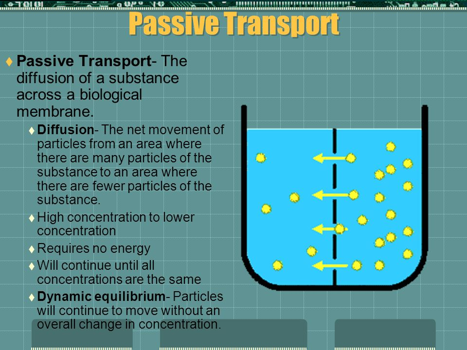 Passive Transport Passive Transport- The diffusion of a substance across a biological membrane.